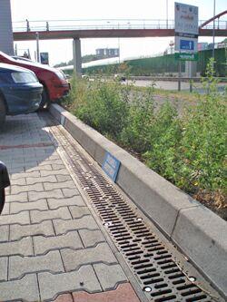 BetoMax на парковке